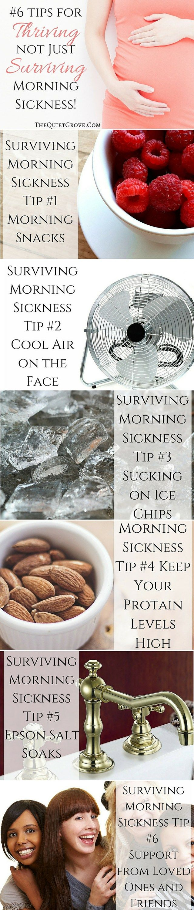 Pregnancy (especially morning sickness) can be extremely hard. The good news is that there are things you can do to help. Learn how to thrive not merely survive morningsickness with these 6 helpful tips by a mom who has been there.