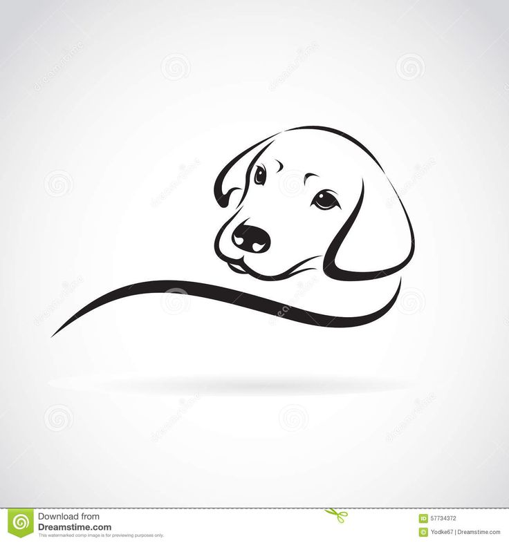 Vector Image Of An Dog Labrador - Download From Over 53 Million High Quality Stock Photos, Images, Vectors. Sign up for FREE today. Image: 57734372