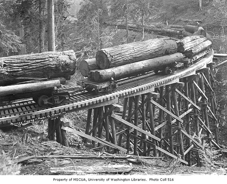 Skeleton railroad cars loaded with logs on trestle, West Fork Logging Company, Mineral, ca. 1935
