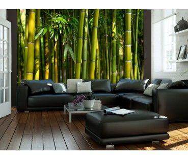 Carta da parati 350x270 cm Asiatica foresta di bambù