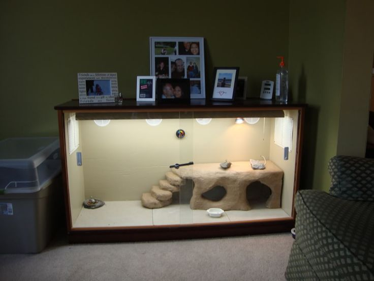 Bearded Dragon Cages | Bearded Dragon . org • View topic - Bearded dragon cage from old ...