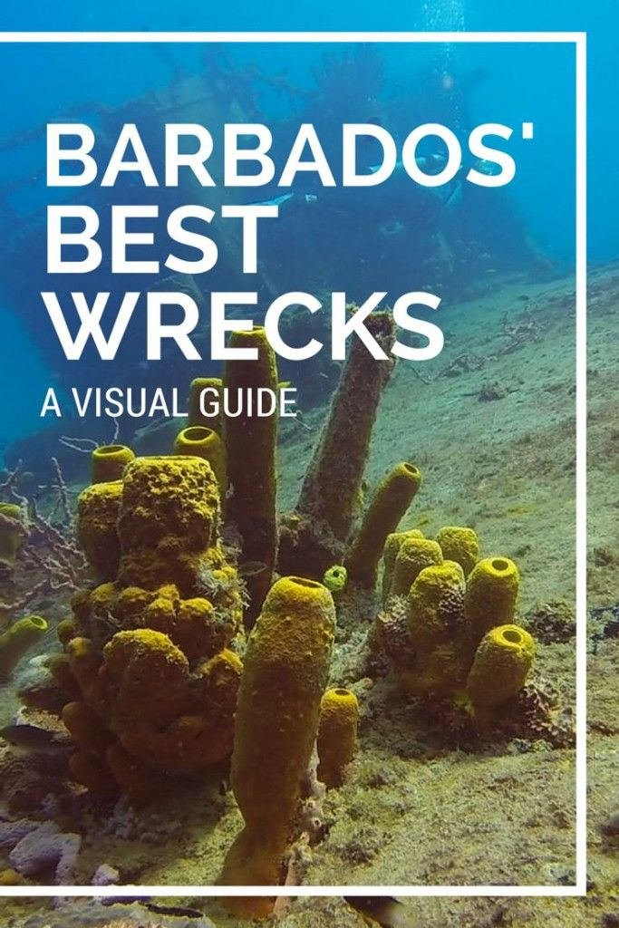 VIDEO post - Barbados' Best Wreck Dives: Diving Carlisle Bay #Barbados…