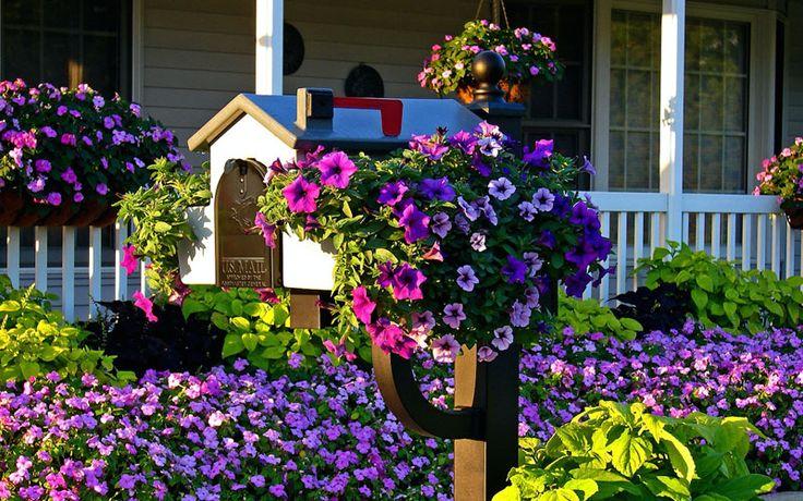 mailbox-flowers