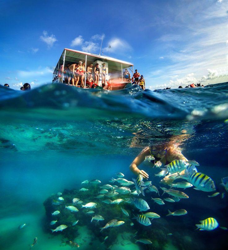 Praia de Maracajaú é conhecida como o Caribe do Rio Grande do Norte.