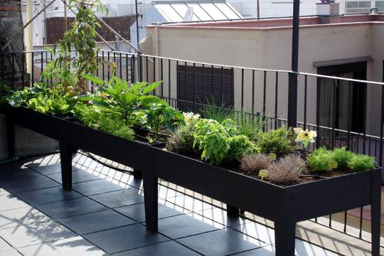 ideias jardins terracos:Raised Balcony Garden