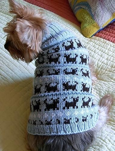 PUPPIES ON PARADE Fair Isle Dog Sweater