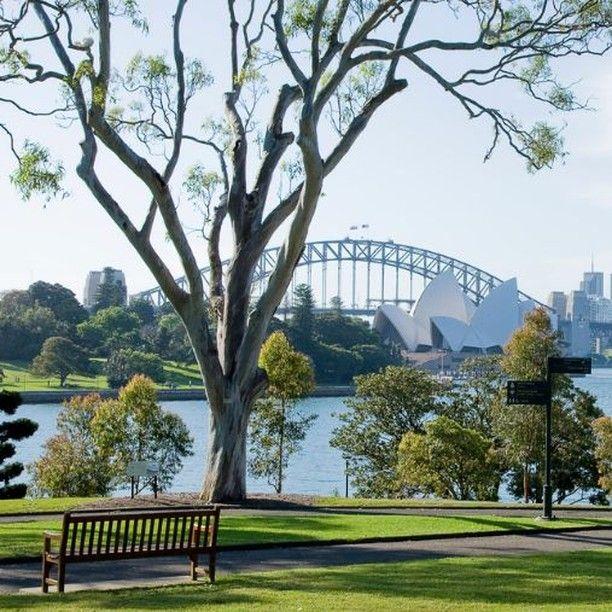 6db43f57a6ed98dd15452661f47b307d - What To Do In Royal Botanic Gardens Sydney