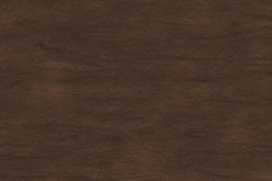 Front Door Stain Color SW 3542 Charwood from Sherwin-Williams