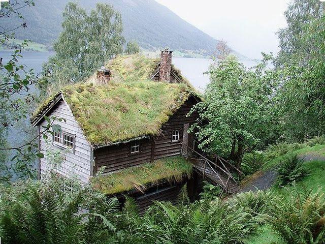 Natuurhuisjes in Scandinavie die helemaal opgenomen zijn in de natuur