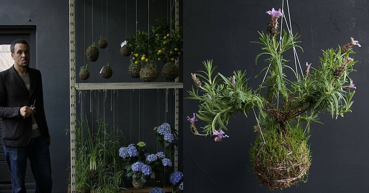 Ethereal Beauty: Fedor van der Valk Discusses His String Gardens