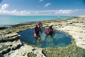 Gisborne - kids love rock pools