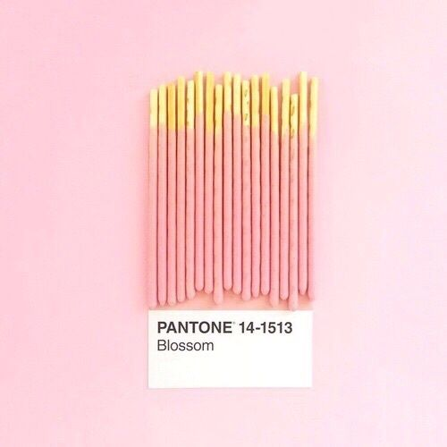 pink, pantone, and food afbeelding