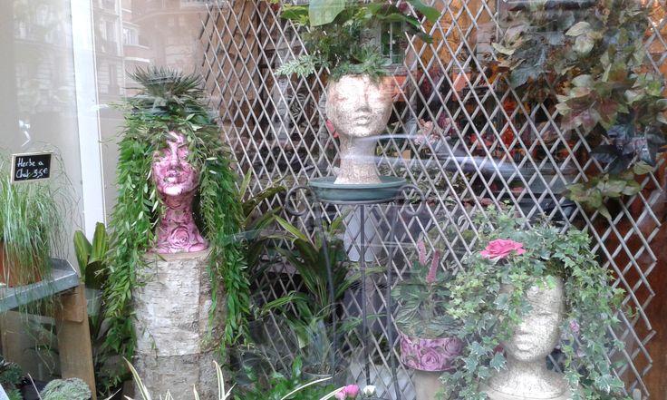 vitrine perruques végétales