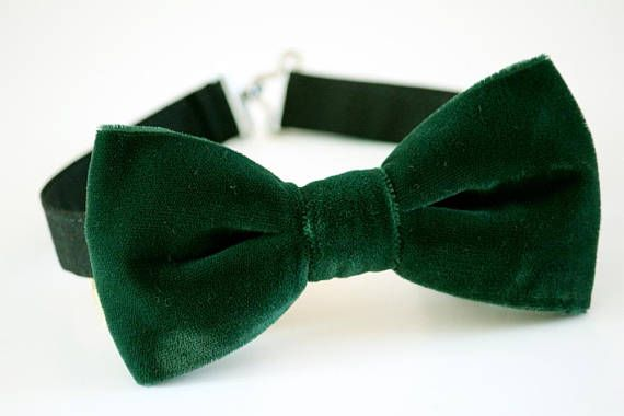 Hey, I found this really awesome Etsy listing at https://www.etsy.com/listing/552322810/green-velvet-bow-tie-wedding-bow-tie
