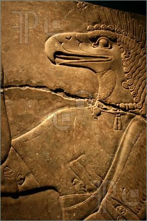 Picture of Egyptian Flacon Carving on Solid Rock - God Horus