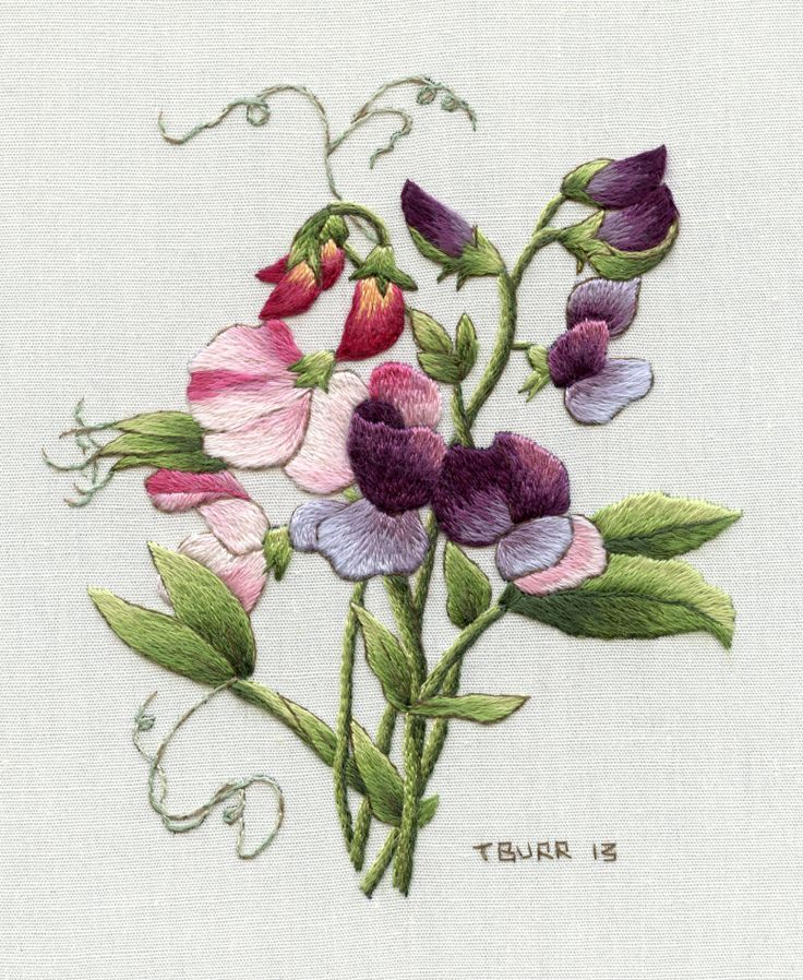 """Trish Burr, """"Redouté's Sweet Peas"""" (Reproduced from a painting by artist Pierre-Joseph Redouté.)"""