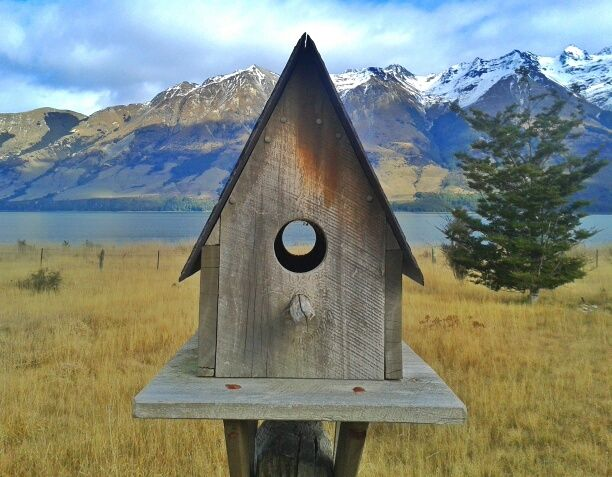 Faded wood bird-house
