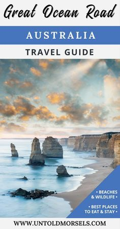 Great Ocean Road travel guide | tips for your self drive tour of the Great Ocean Road | koalas and wildlife | Australia highlights #GreatOceanRoad  #Australia #VisitAustralia #bucketlist #travelguide