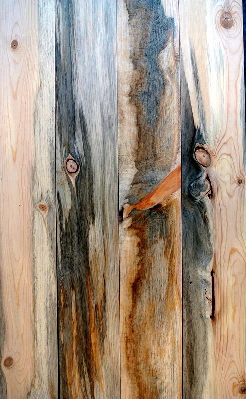 Beetle Kill Pine Lumber Denver Blue Aspen Wall Wood 1