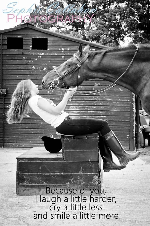 Horse quotes https://www.facebook.com/SophieCallahanPhotos  #horsequotes