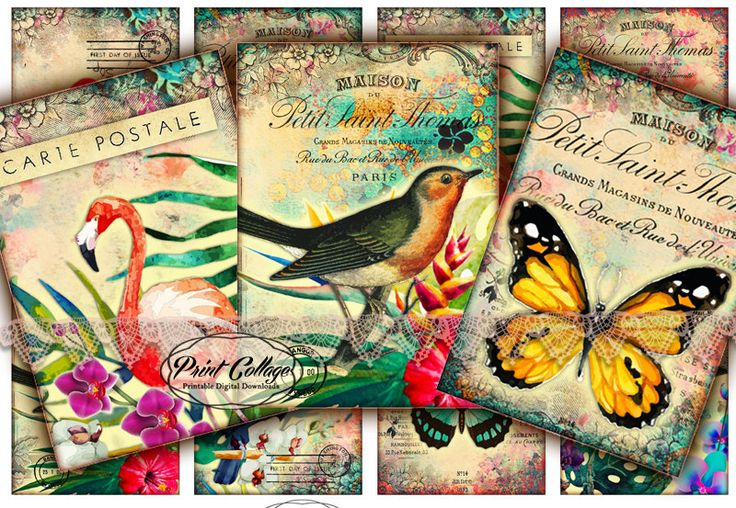 Digital Collage Sheet Printable Designed Gift Tags and Cards for Scrapbooking Printable Paper for Jewelry Holders Tags - Exotic life - T47 - pinned by pin4etsy.com