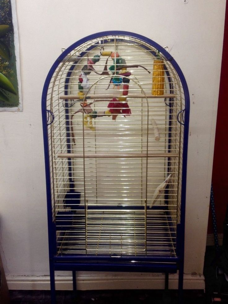 used large bird cages for sale