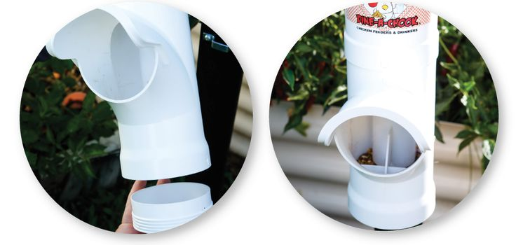 dine-a-chook-detailed-images-rain-hood-carry-handle-removable-base4.png#chickens feeders #hens #eggs #feeders #homesteading #farmers #drinkers #Townsville #shop #Mealworms #chickens  #PoultryFarming
