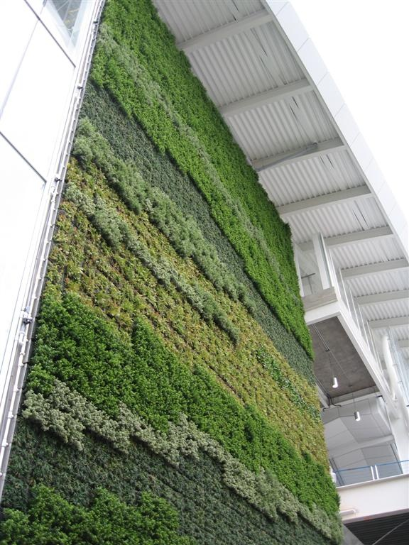 50 foot tall green wall in Vancouver International Airport, located immediately outside the doors of the International arrivals gate on the front wall of the YVR Canada Line Station.