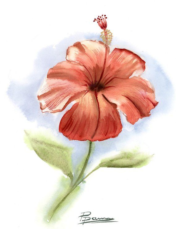 Hibiscus Flower Art Watercolor Print Botanical Poster Floral Artwork Red Flower Painting Tropical F Flower Painting Flower Art Floral Artwork