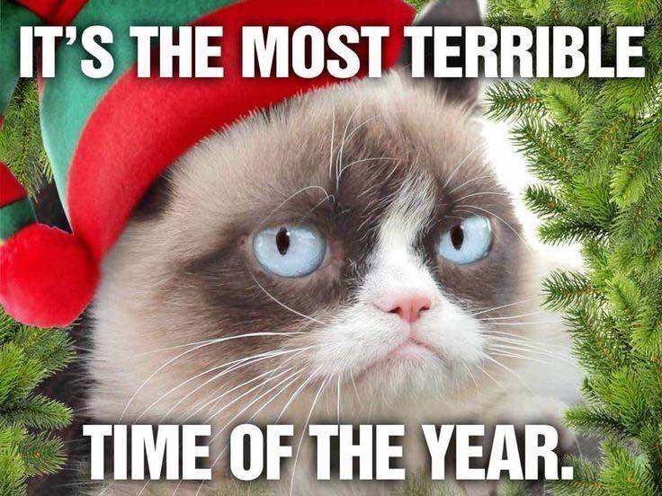 Happy Holidays From Grumpy Cat Funny Grumpy Cat Memes Grumpy Cat Christmas Grump Cat