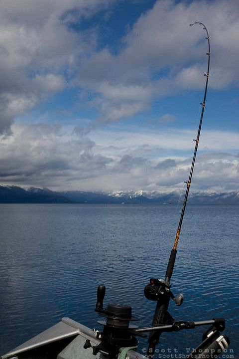 19 best fishing tahoe south images on pinterest for South lake tahoe fishing charters