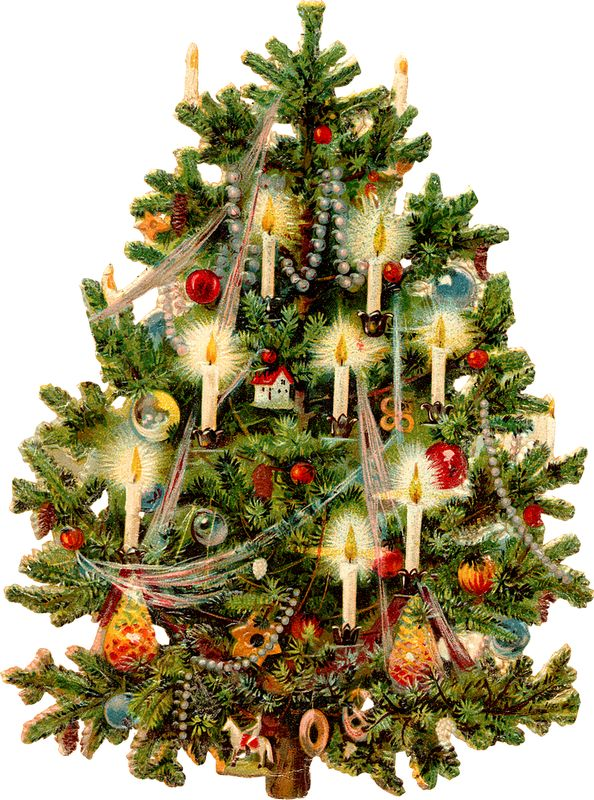 520 best oh Christmas tree images on Pinterest | Merry christmas ...
