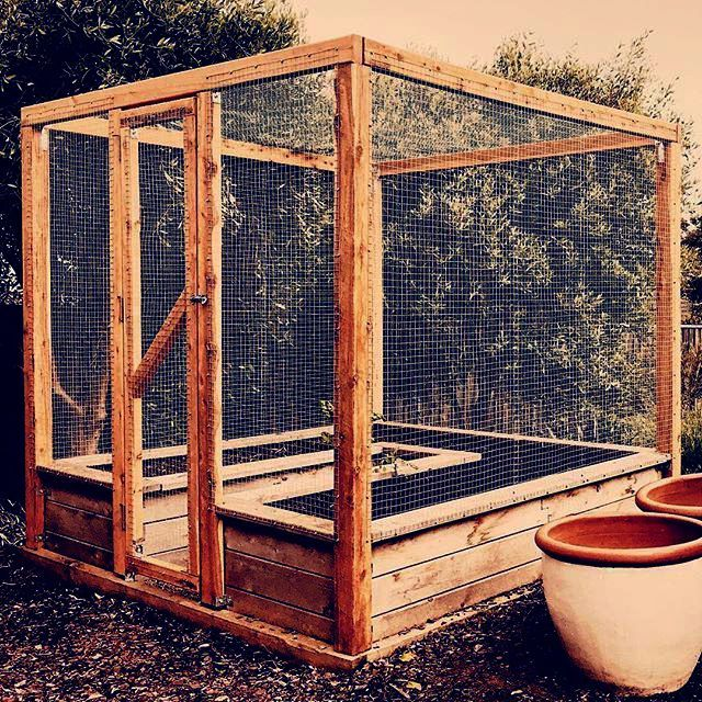 Raised Garden Bed Ideas For Elderly. Garden Landscaping