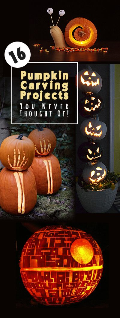 16 Pumpkin Carving Projects You Never Thought Of! • Tons of ideas, projects and tutorials! Plus links to fabulous pumpkin carving templates and patterns!