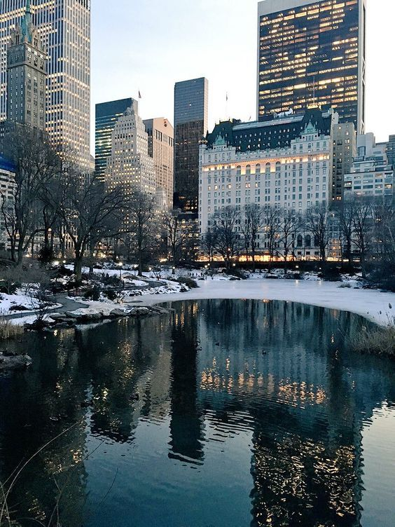 The Pond in Central Park by @centralpark_nyc