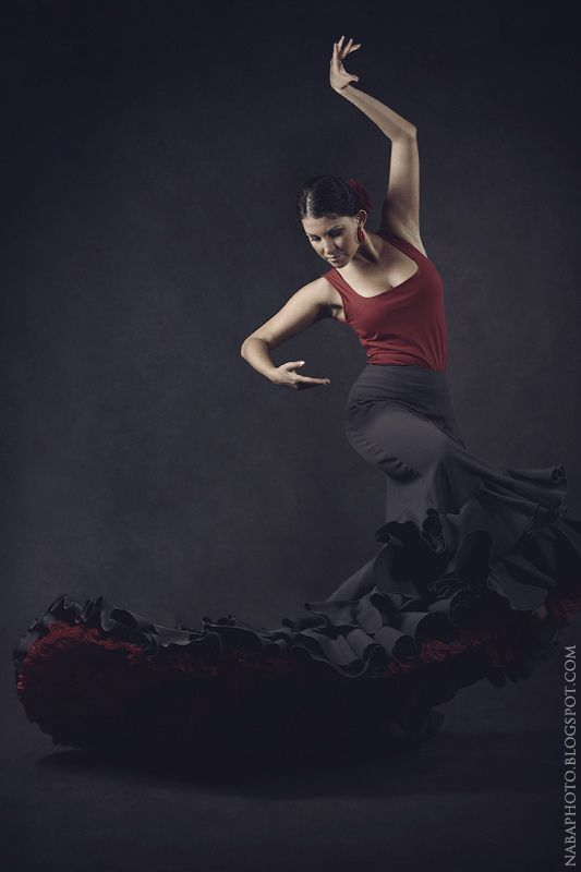 Flamenco Dancer by Natalia Ba, via Behance