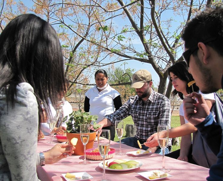 Tequisquiapan, Mexico - Wine & Cheese Tour