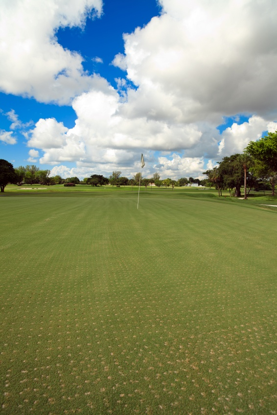 Reduce Recovery Times Following Aerification