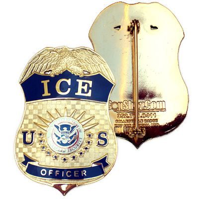 DHS ICE Officer Curved Badge