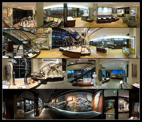 Beneski Museum of Natural History-Amherst, MA