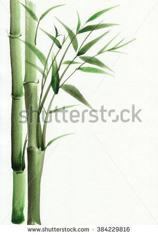 Bamboo original watercolor painting. Asian style.