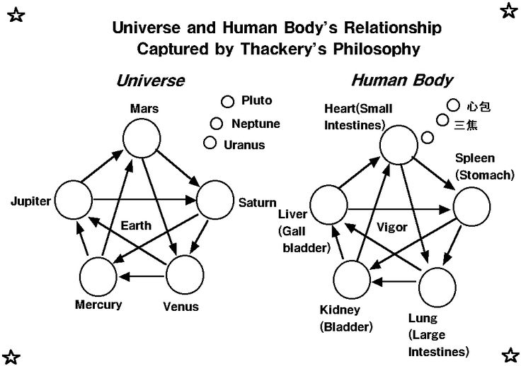 schistosomes and humans relationship with the universe
