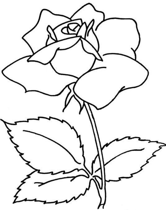 Нарисовать цветок на открытку, лет маме