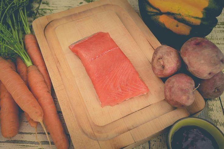 Sena Sea Coho Salmon and Corn Chowder  Fall Recipes