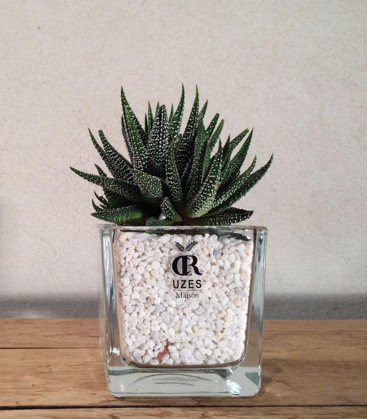 15 must see gravier blanc pins marches de la porte d. Black Bedroom Furniture Sets. Home Design Ideas