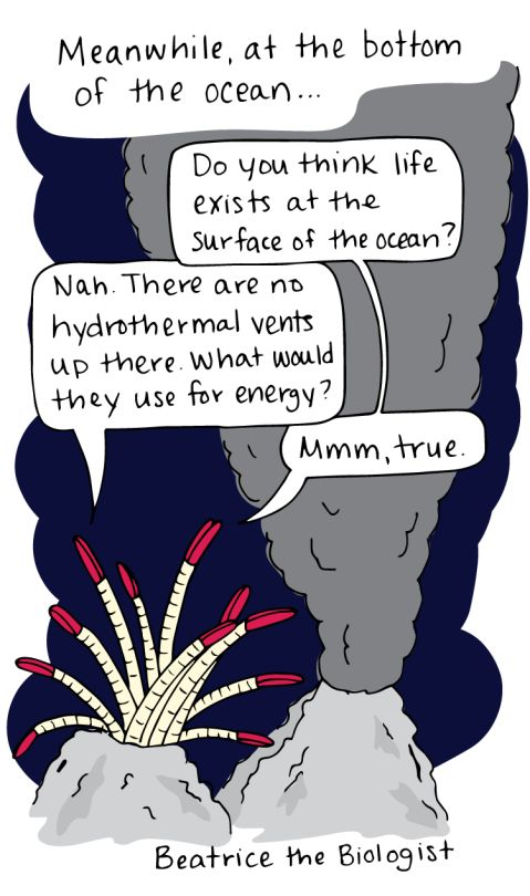 Beatrice the Biologist