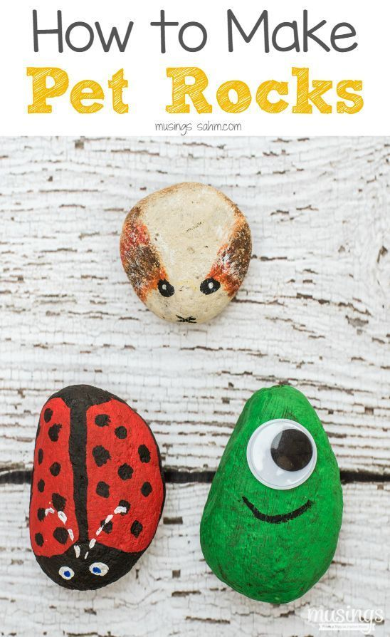 Pet Rocks - a fun craft activity for kids of all ages.