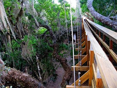The Canopy Walkway near Sarasota Florida http://www.gypsynester.com/florida-west-coast.htm