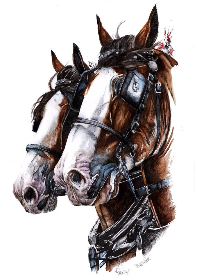 Horse painting by Kate Simpson