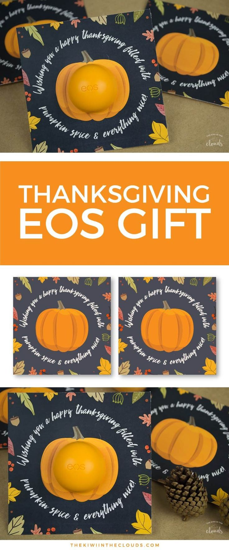Thanksgiving Gifts | EOS lip balm gift | Small Gift Idea